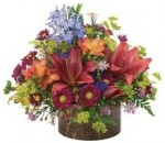 Mother's Day Lilies, flower delivery companies