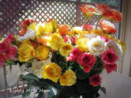 mother's day flower gifts, rose bouquets