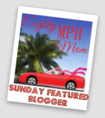 Sunday Featured Blogger – The Type A Housewife