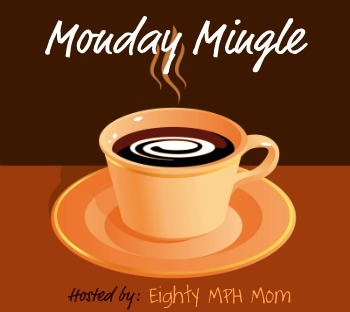 monday-mingle-vlog-meme