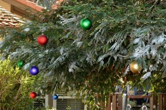 Kmart Outdoor Holiday Shop – my home all decorated! #CBias