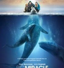 $50 Fandango Gift Card Giveaway – Big Miracle release