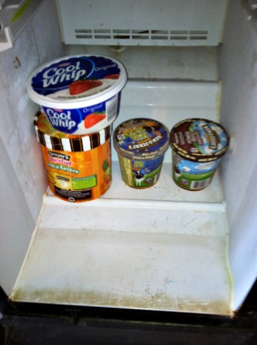 dirty freezer