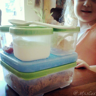 rubbermaid lunchblox sandwich kit,BPA free lunchbox