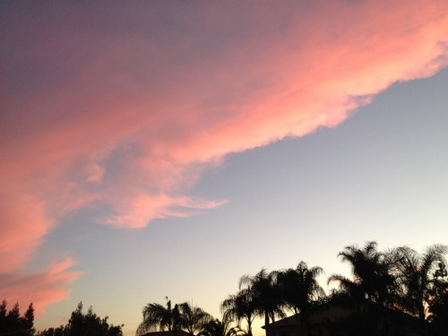 Pink Clouds,sky,unusual clouds