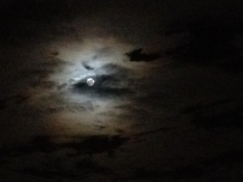 moon in clouds, black sky