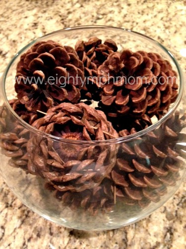 pine cones,DIY, Home Decor,painting