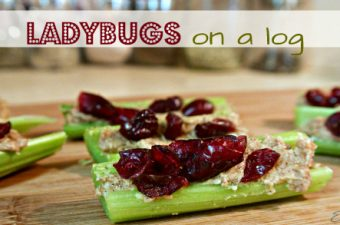 Kid Snacks: Ladybugs on a Log