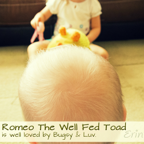 romeo the well fed toad