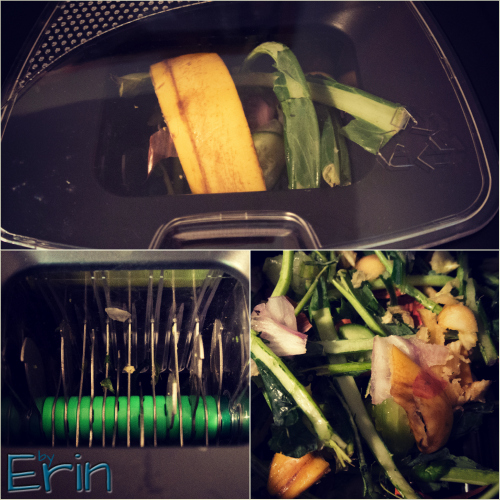 Recycle Food Scraps with the Green Cycler