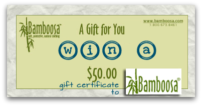 Bamboosa Review {$50 gift certificate giveaway}