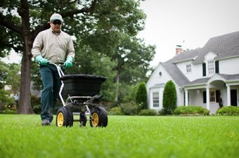 TruGreen for lawn – let the experts take over!