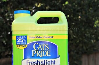 cat's pride,litter,clumping