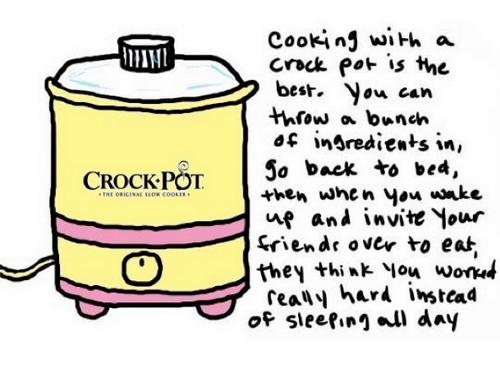 Funny Crock-Pot (500x367)