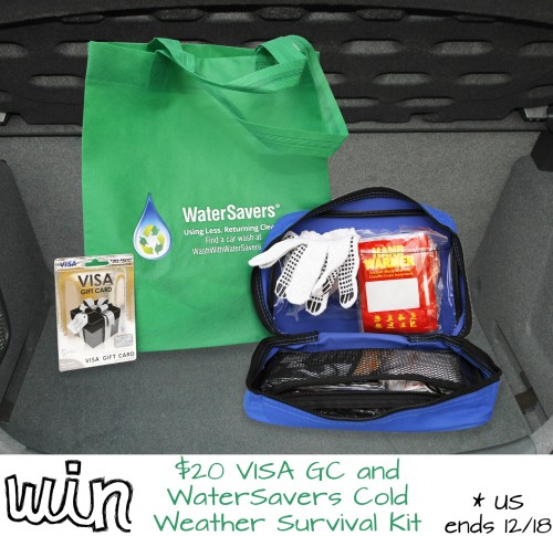 Are You Ready for Winter? $20 VISA GC and WaterSavers Cold Weather Survival Kit Giveaway