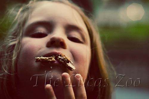eating,cookie bar