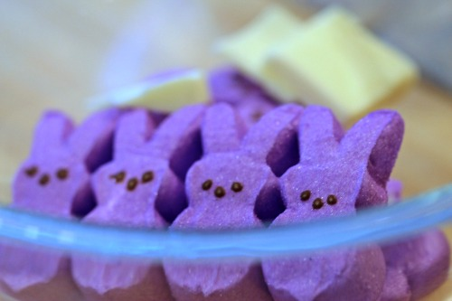 Purple,Peeps,Bunnies,Bunny