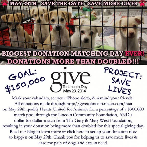 hearts united for animals Fundraiser