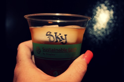 Sustainable Earth Cup
