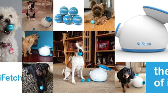 Fluffy Can Fetch All Day Long with iFetch – Review
