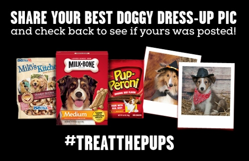Big Heart Pet Brands Doggy Dress-Up Contest