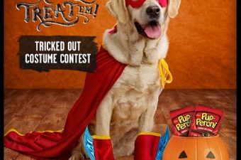 Celebrate Halloween with Your Four-Legged Pals and Big Heart Pet Brands