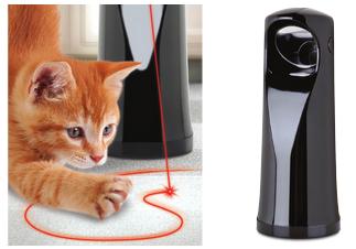 cat laser