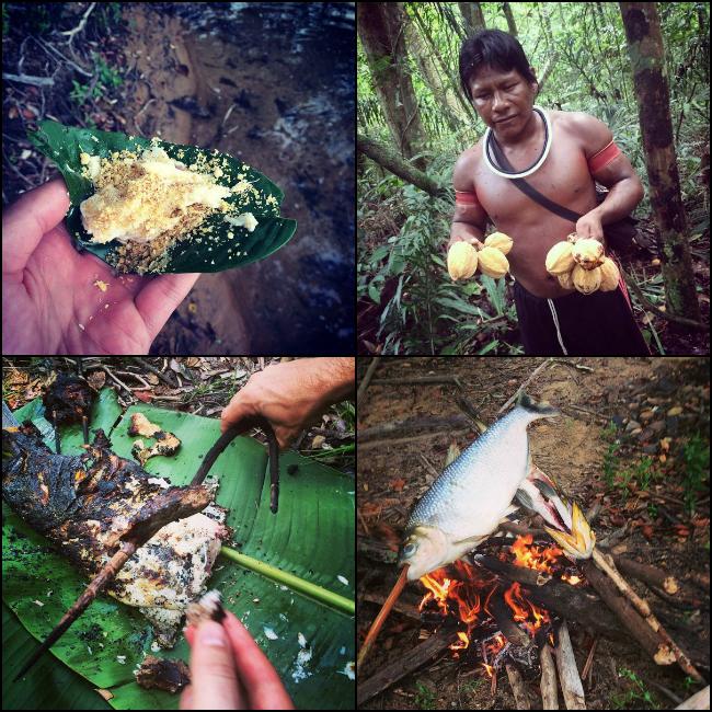 amazon,food,fish
