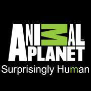 Celebrate This Holiday with Animal Planet!