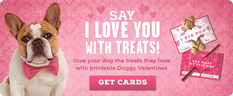 Big Heart Pet Doggy Valentine Cards, Printable