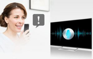 Panasonic - Voice Assistant