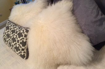 grandin road david bromstad mongolian lamb fur pillows