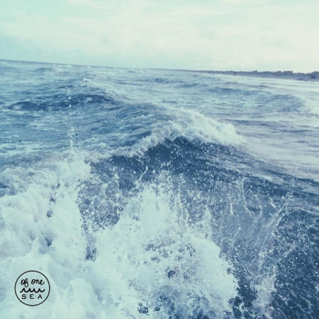 OF ONE SEA - Ocean Image