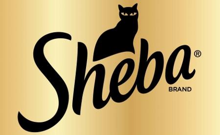 Feed Your Felines Like Family Switchtosheba Perfect
