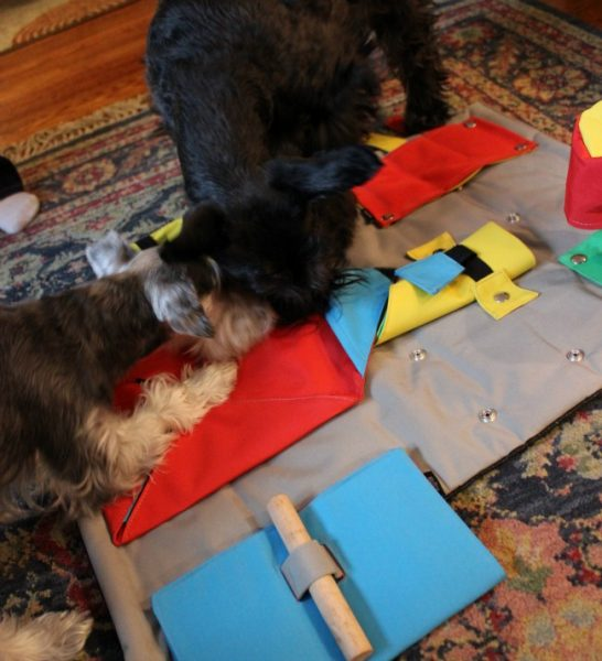 Lucy and Pippa BUSTER Activity Mat