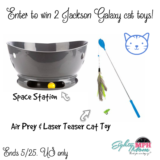 jackson galaxy cat toys giveaway