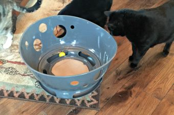 Jackson Galaxy Petmate collection of cat toys at PetSmart