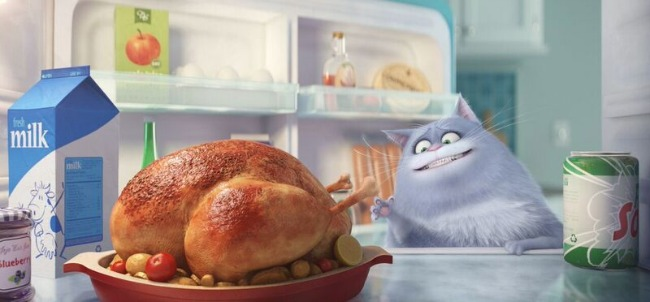 Secret Life of Pets cat