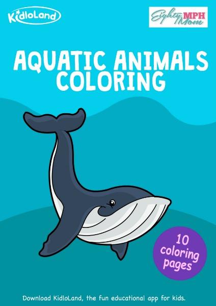 aquatic animals coloring book
