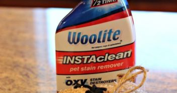 Woolite Instaclean stain remover