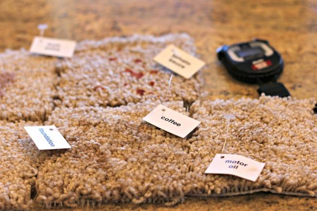 Woolite Instaclean test