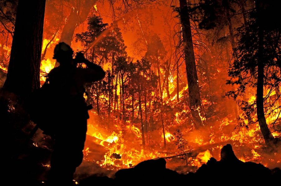 California 2015 Wildfires - Photo Credit, Brandi Carlos, NBC News