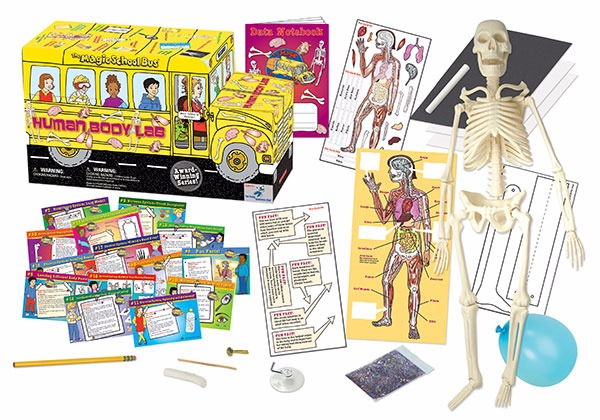 magic school bus human body lab