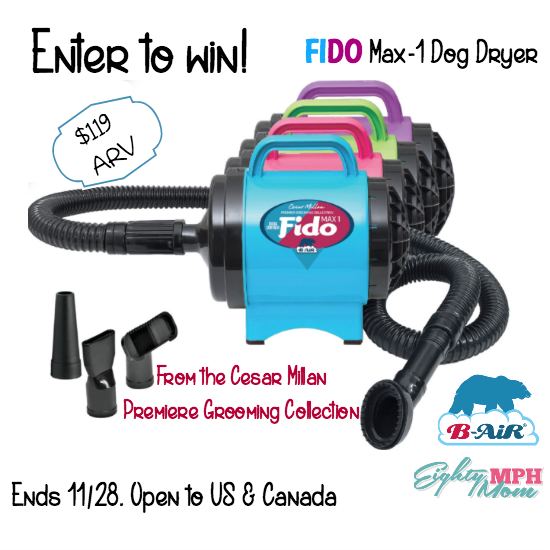 Fido Max-1 Dog Dryer giveaway
