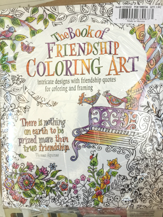 oriental trading the book of friendship coloring art book