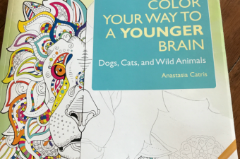 Draw and Color Your Way To a Younger Brain Book