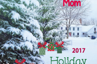 Eighty MPH Mom 2017 Holiday Gift Guide