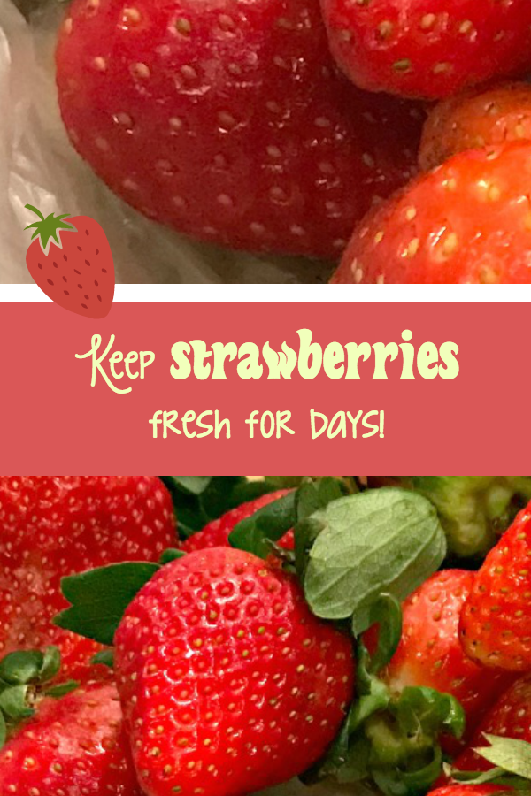 Make your strawberries stay fresh longer
