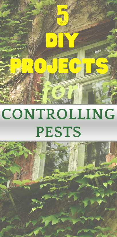 5 diy projects for controlling pests