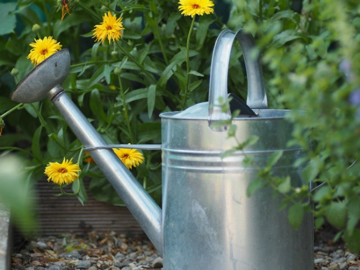 watering can sitting near a flower bed